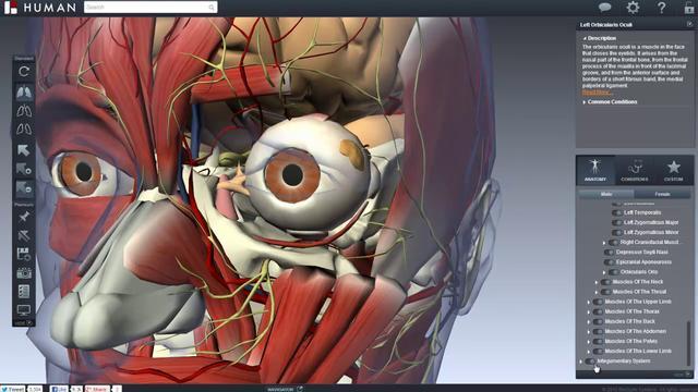 ¿Queres estudiar el cuerpo humano? entrá.