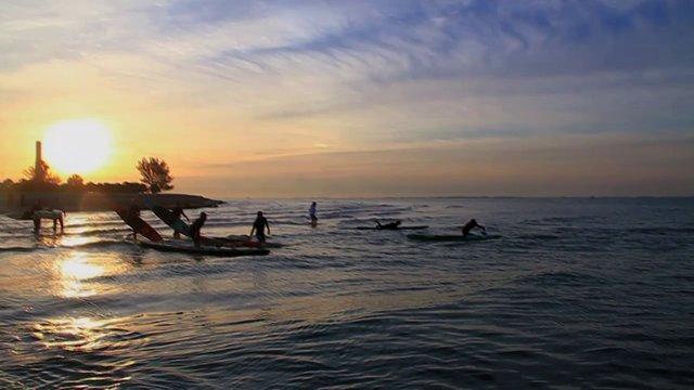 BARK: Paddle With Purpose Tampa Bay
