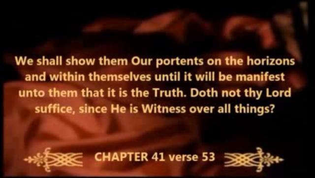 Allah's Miracles 2013