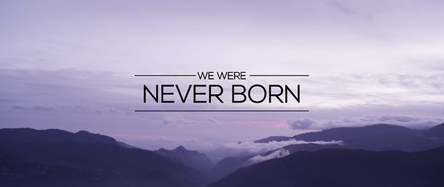 WE WERE NEVER BORN
