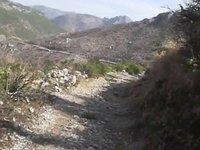 Tour de Taxila Museum thru Shah Allah ditta Road 32 kms over 2000 feet climb up & down 24-Feb-13