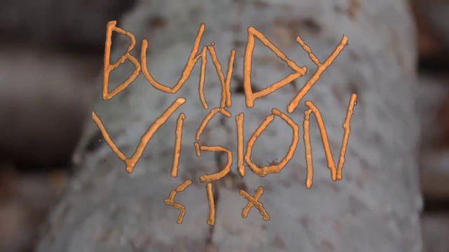 bundy vision 6