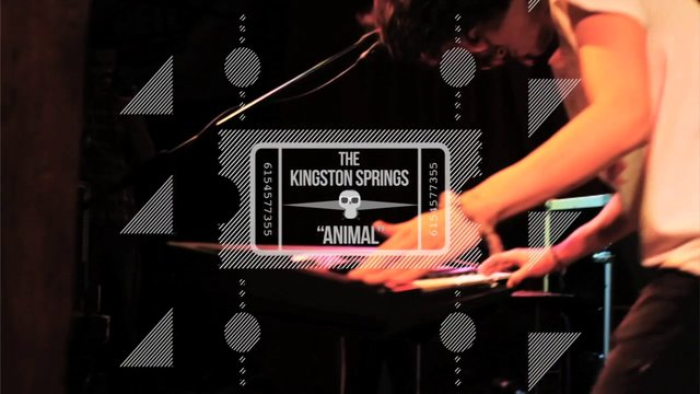 The Kingston Springs // Animal
