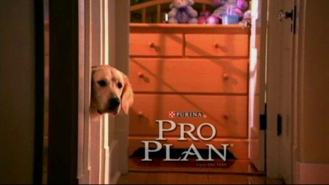 Pro Plan Purina
