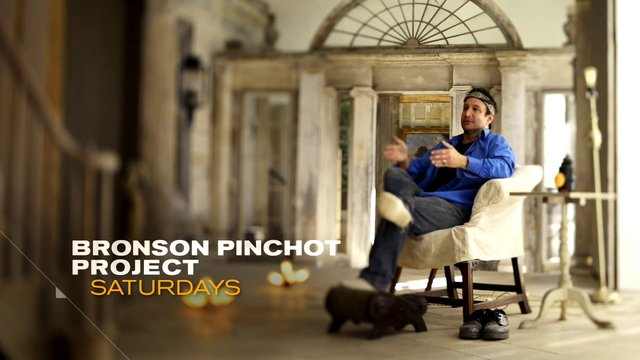 DIY The Bronson Pinchot Project