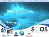 CLee- Gliders under ice
