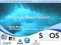 SRintoul- Polynya Observations