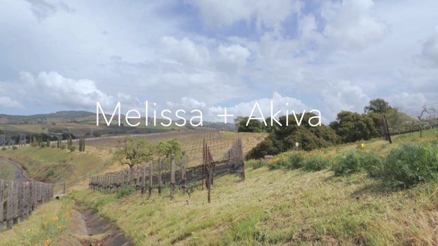 Melissa + Akiva // Wedding Preview