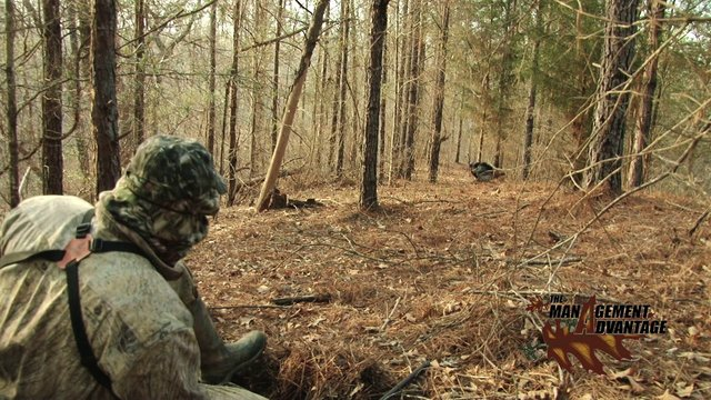 How To Get A Turkey Off Your Decoy - The Management Advantage