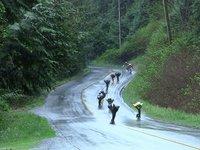 Yardwaste Downhill: Majuba Round 2