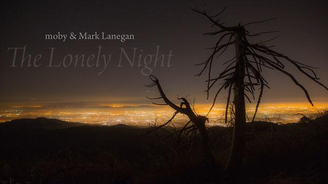The Lonely Night Lyrics