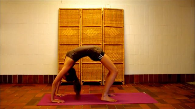 VIDEO: Hatha Yoga For Beginners – TOP 10 Poses