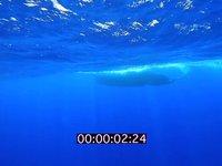 2012 09 MAURITIUS 4283