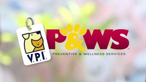 VPI PAWS 60 second Promo