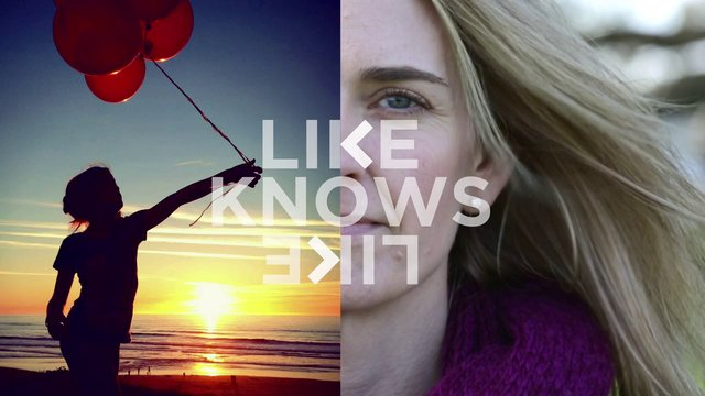 Ali Jardine - Like Knows Like
