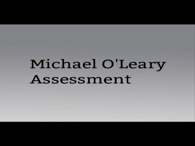 Michael O'leary Assessment