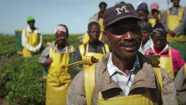 John Taylor - Unilever Heroes: Kenya