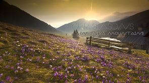 Cztery pory roku w Tatrach. Coś pięknego!