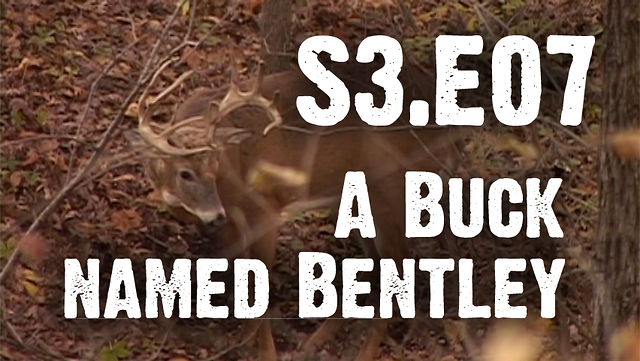 "Whitetails INC S3.E07 - ""A Buck Named Bentley"""