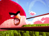 Angry Birds 3D Animation Test by Squeeze Studio Animation