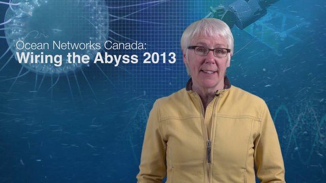 Introduction - Wiring The Abyss 2013