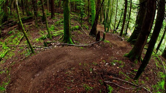 Mountain Bike News - Sunshine Coast - Welcome the Trail Wizard