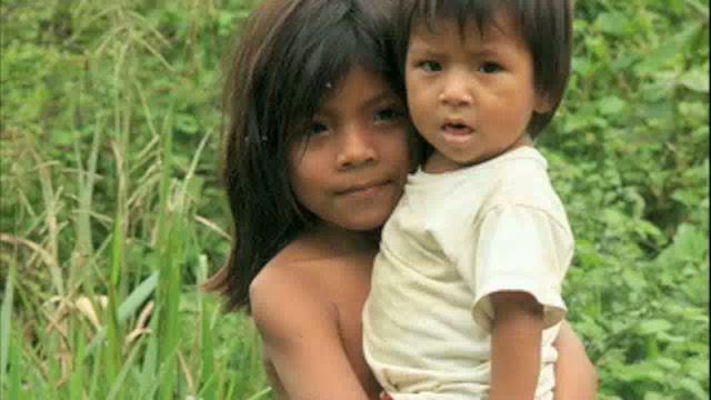 NCS: Viva Amazonia