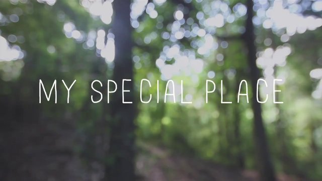 my special place essays Descriptive essay essayontimecouk being lost and on my own in a place where i knew no one was a true adventure knowing that this is my special place and.