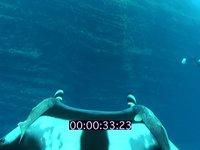 2010 11 SOCORRO 056