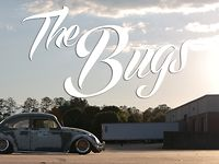 The Bugs  ( ft. 2 Slammed Beetles ) / KSP-Productions