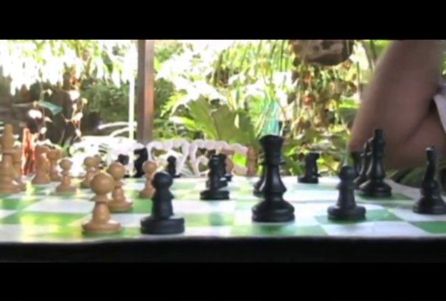 Jaque Ave (Des échecs et des oiseaux)