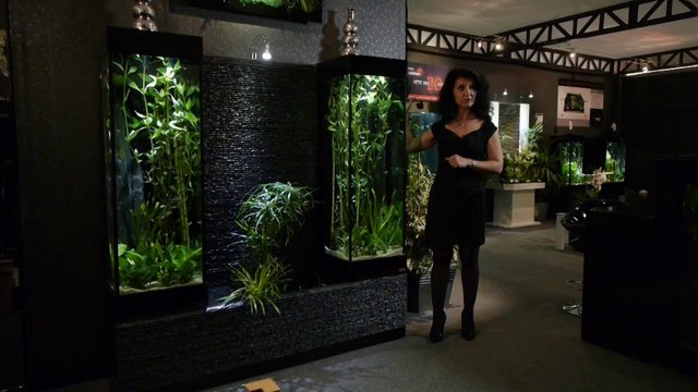 aquarium mur d 39 eau int rieur design galapagos on vimeo. Black Bedroom Furniture Sets. Home Design Ideas