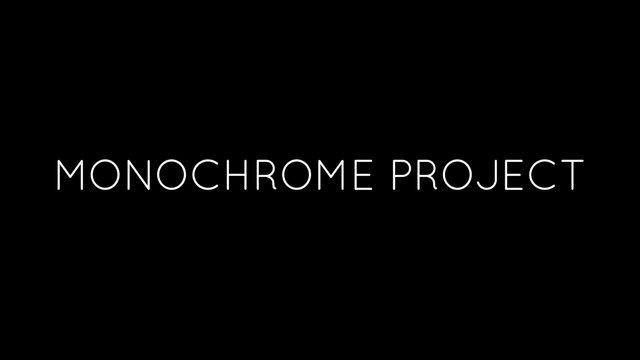 모노크롬 프로젝트 Monochrome Project