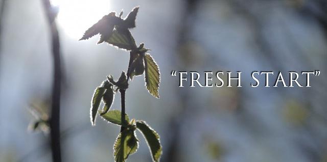 The Harvest | Fresh Start