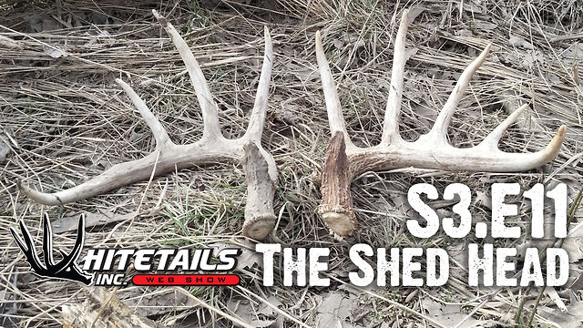 """Whitetails INC S3.E11 - """"The Shed Head"""""""
