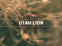 Utah Lion