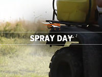SPRAY DAY