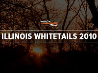 ILLINOIS WHITETAILS 2010
