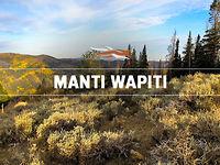 Manti Wapiti