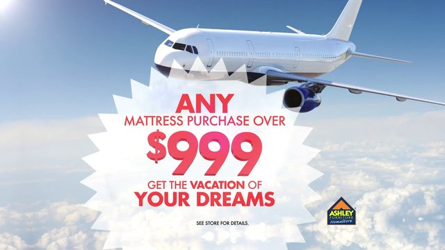 Ashley Furniture Homestore - Vacation Mattress