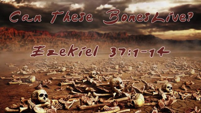 Valley of Dry Bones Bible Valley of Dry Bones Ezekiel 37