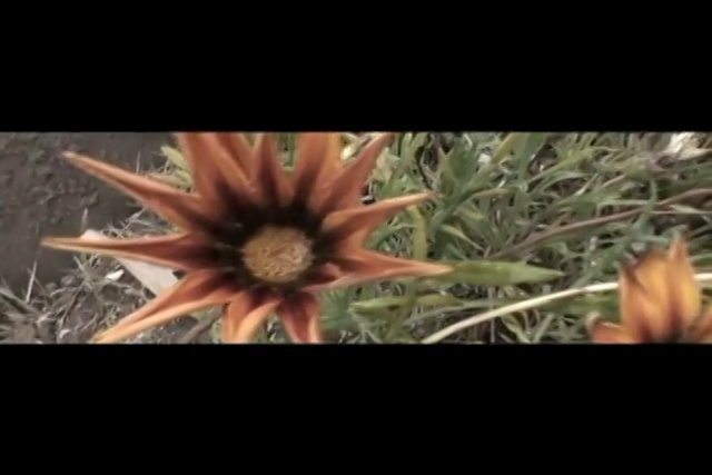 Un spot clipeado con im�genes de la Educaci�n P�blica de la localidad de Freirina, dentro del plan del Estado de recuperaci�n de la misma.
