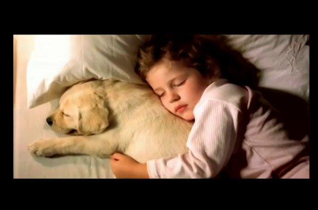 Una pareja ve a su hija dormir pl�cidamente con su cachorro mascota metido en la cama con ella. Se enternecen y se preguntan qu� so�ar�n los perros.