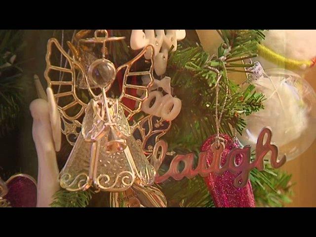 December 24, 2010 KMTV Story