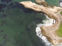 Drone Camera Captures Aerial Footage of Surfers at Steamer Lane