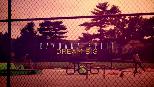 Dream Big - Bandana Split