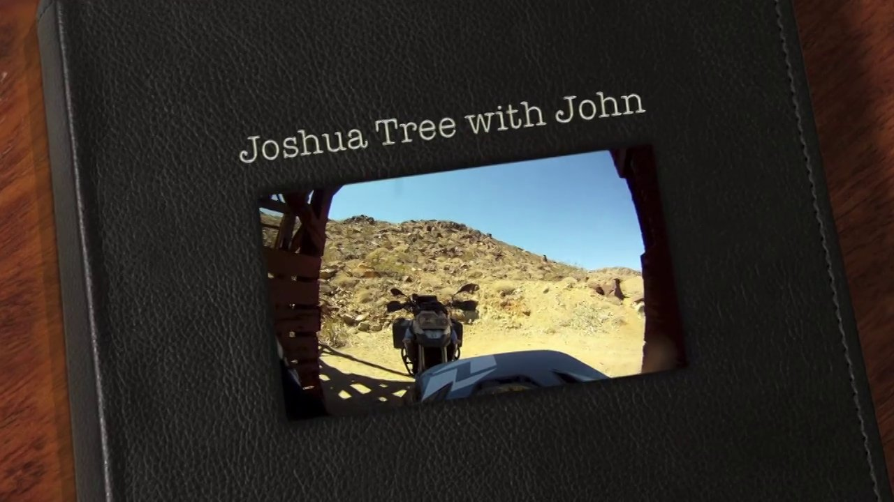 Joshua Tree with John