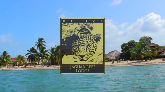 jaguar reef lodge belize on vimeo. Black Bedroom Furniture Sets. Home Design Ideas