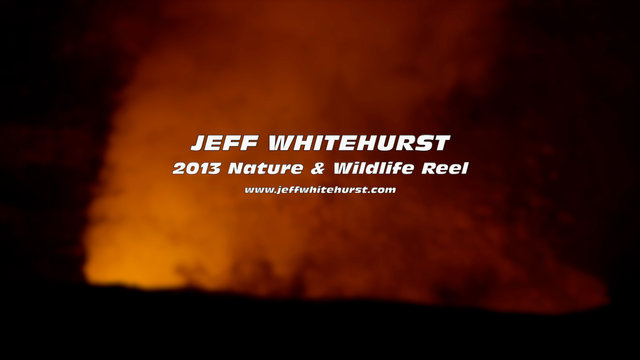 Nature Demo Reel (Jeff Whitehurst)