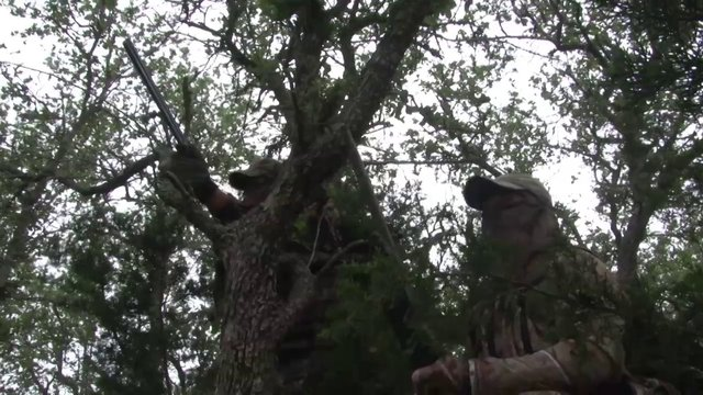 Turkey Hunting the Country - Backwoods Life 9.8